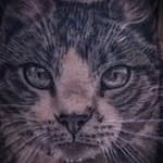Lisa DeLauder Tattoo Artist black and grey domestic cat 3