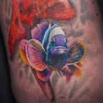 Emily Graven color tropical fish 2