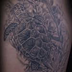 Lisa DeLauder Tattoo Artist black and grey sea turtle