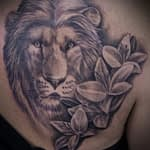 Chris DeLauder Tattoo Artist black and grey lion