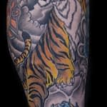 Ian Tadashi color asian tiger